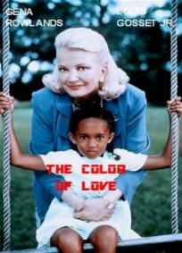 A Cor do Amor: A história de Jacey