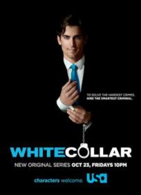 White Collar - 1ª Temporada