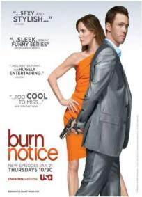 Burn Notice - 2ª Temporada