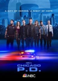Chicago P.D. - 7ª Temporada