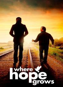 De Onde Vem a Esperança