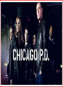 Chicago PD - 2ª temporada