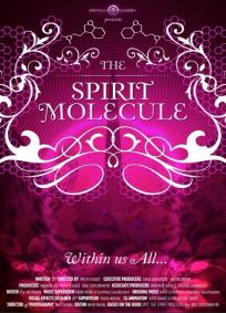 DMT - A Molécula do Espírito