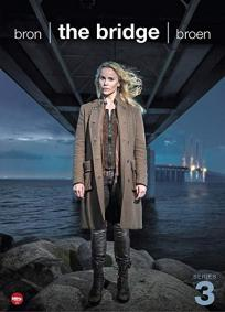 A Ponte (Temporada 4)