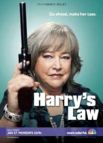 Harry´s Law - 2ª Temporada