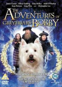 As Aventuras de Bobby