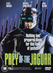 A Perseguição do Jaguar
