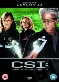 CSI - Las Vegas - 12ª Temporada