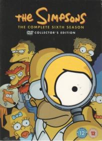 Os Simpsons - 6ª Temporada