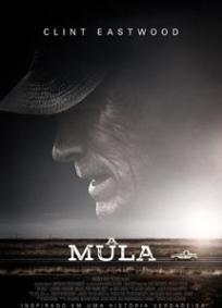 A Mula