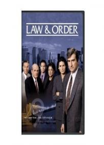 Lei e Ordem - 9ª Temporada