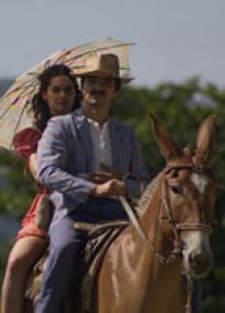 A noiva ou a mula