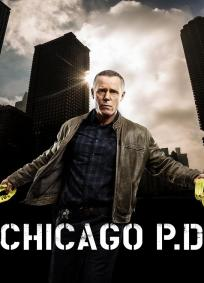 Chicago PD - 5ª Temporada