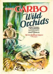 Orquídeas Selvagens