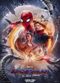 Homem-Aranha 3 (2021)