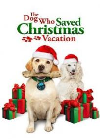 O Cachorro Que Salvou As Férias De Natal